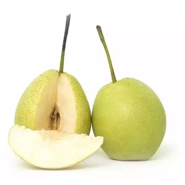 Pear (Nashpati) 500 gm