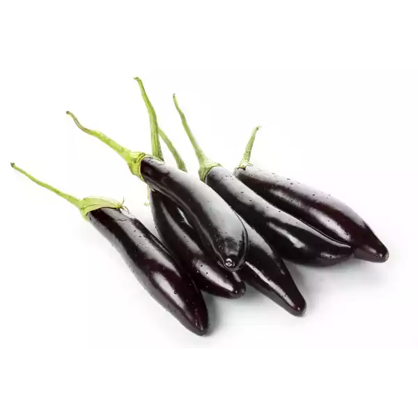 Long Brinjal Black (Kalo Begun) - 500 gm