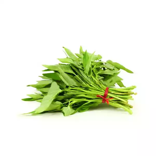 Water Spinach (Kolmi Shak) - 1 Bundle