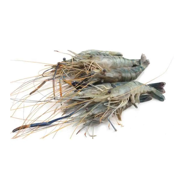 Golda Prawn (Chingri Medium) 500 gm