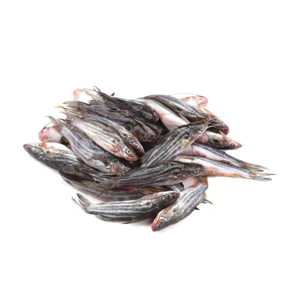 Tengra Fish Deshi (500 gm)