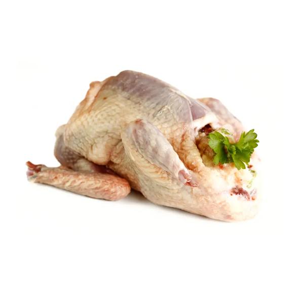 Pigeon (Kobutor) Meat (Pcs)
