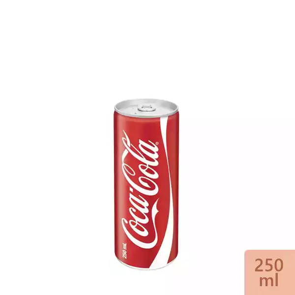 Coca Cola Can (250 ml)