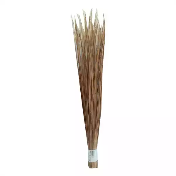 "Big Broom 31"" (Shola) (1pcs)"