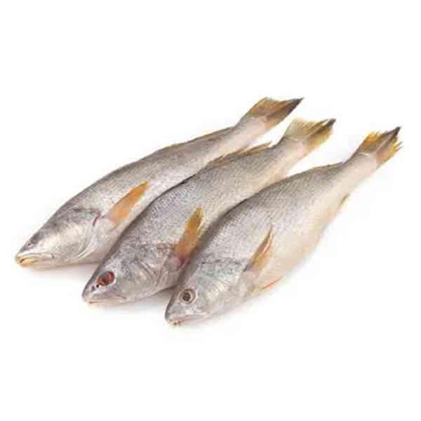 Poya Fish ( 1 kg )